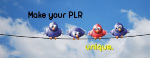 Make your PLR unique
