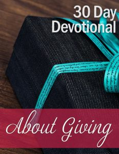 Christian PLR – Personal and Business Devotionals